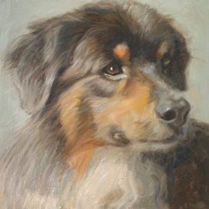 portrait of a dog in oil by Nancy Bass