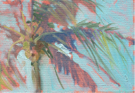 colorful palm tree oil painting by Douglas David